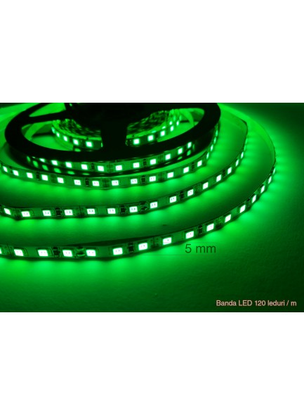 Banda_LED_Verde_5mm